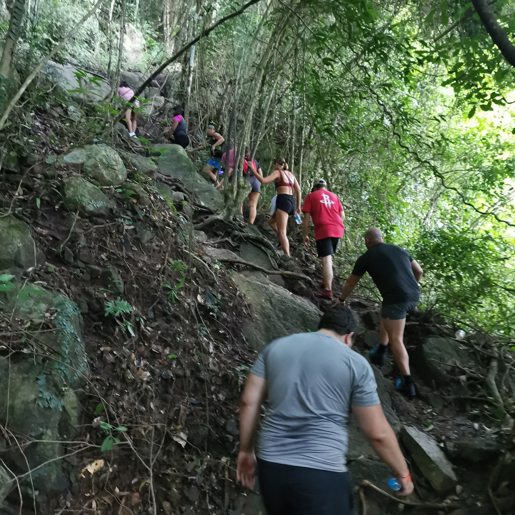 Go on hikes and explore the beautiful island of Ko Samui during your stay at the fitness retreat!